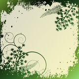 Floral Background, ornament, leaves Stock Photography