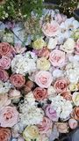 Floral background. Pastel color flowers. Floral carpet. Floral pattern. white roses. Floral background. Flowers of different colors. Floral carpet. Floral royalty free stock image