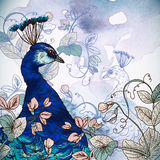 Floral Background with Peacock Royalty Free Stock Images