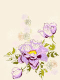Floral background with peony Stock Photo