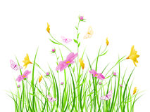 Floral background with pink flowers Stock Images