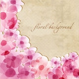 Floral background with pink irises Royalty Free Stock Image