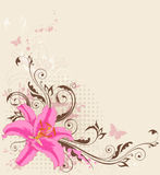 Floral background with pink  lily Stock Photography