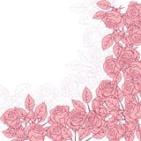 Floral background with pink roses. Vector Royalty Free Stock Photography