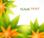 Floral background with place for text Stock Photos