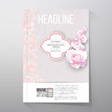 Floral background with place for text and pink Royalty Free Stock Photos