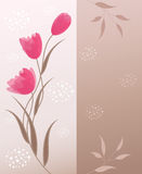 Floral background with place for your text. Stock Photography