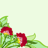 Floral Background With Poppies And Leaves Royalty Free Stock Photos