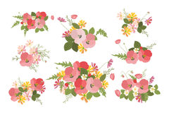 Floral background poppy and cosmos strawberries  illustration Royalty Free Stock Images