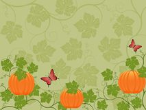 Floral background with a pumpkin Royalty Free Stock Image