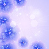 Floral background purple Stock Photo