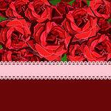 Floral background of red rose with pink ribbon. Floral copy-space Stock Images