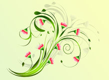Floral background. Floral background with reflection Stock Photography