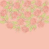 Floral background with rose in pastel tones Royalty Free Stock Photo