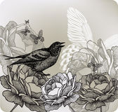 Floral background with roses and bird sitting, han Royalty Free Stock Image