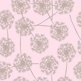 Floral background seamless pattern dandelion Royalty Free Stock Photos