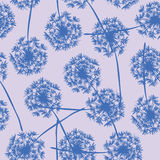 Floral background seamless pattern dandelion Royalty Free Stock Image