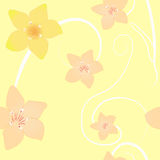 Floral background seamless pattern yellow plumeria Stock Photography