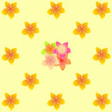 Floral background seamless pattern yellow plumeria Stock Images
