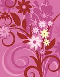 Floral Background Series Royalty Free Stock Photo