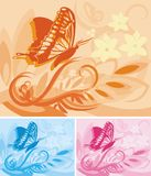 Floral Background Series. Vector background with floral ornaments and a butterfly stock illustration