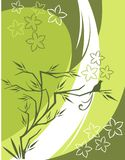 Floral Background Series. Vector background with floral ornaments and an exotic bird vector illustration