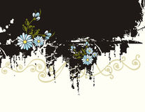 Floral background series Stock Photo