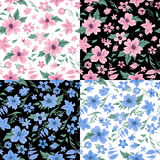 Floral Background Set. Flowers Seamless Pattern. Vintage Flowers Stock Photo