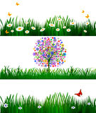 Floral background set. Vector illustration Royalty Free Stock Photos