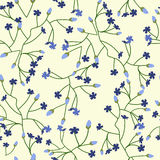 Floral background with small flowers Royalty Free Stock Photography