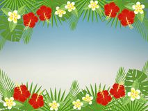 Floral background with space for text. Tropical flowers and leaves - hibiscus, palm tree, Monstera, plumeria. Stock Photography