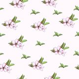 Floral background of spring flowers. Gentle light texture for the design of greeting cards, tiles, bedding, invitations, greetings. And advertising royalty free illustration