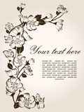 Floral background. Spring floral background, hand drawn vector flowers Royalty Free Stock Photos