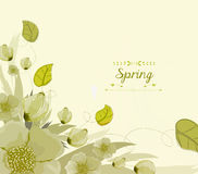 Floral background, spring theme, greeting card Royalty Free Stock Image