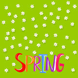 Floral background with Spring word stock illustration