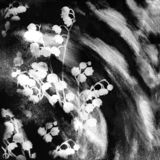 Floral sketch background with stylized lily of the valley on grunge stained and striped backdrop in black and white design royalty free illustration