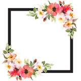 Floral background template with roses and black frame. Floral square background template with roses and black frame Stock Photos