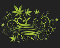 Floral background texture and cannabis leaves illustration Royalty Free Stock Photography