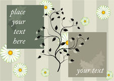 Floral background with two frames Stock Photography