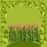 Floral background for valentine day. Decorative ornamental grape and roses greeting card Stock Image