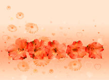 Floral background for Valentine's day royalty free stock images