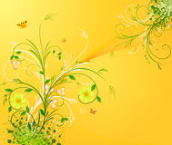 Floral  background vector Royalty Free Stock Image