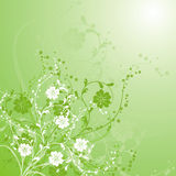 Floral background, vector Royalty Free Stock Photos