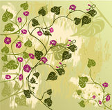 Floral Background - vector. Grunge Floral Background - vector illustration Stock Photography