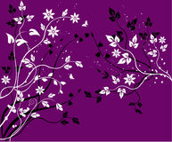 Floral  background - vector Royalty Free Stock Image