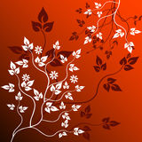 Floral  background - vector. Floral  background - abstract, art vector Stock Photos