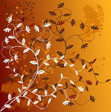 Floral Background - vector Stock Photo