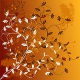 Floral Background - vector. Grunge Floral Background - vector illustration stock illustration