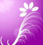 Floral Background, vector Stock Photo