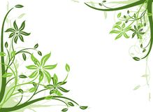 Floral background, vector Stock Photos
